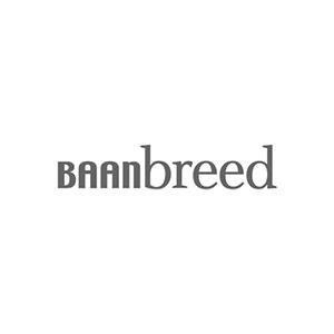 Fyff | Find Your Flex Force logo Baanbreed