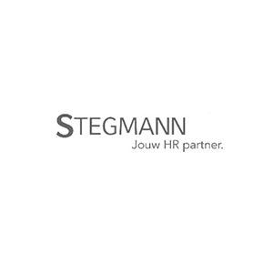 Fyff | Find Your Flex Force logo Stegmann HR partner