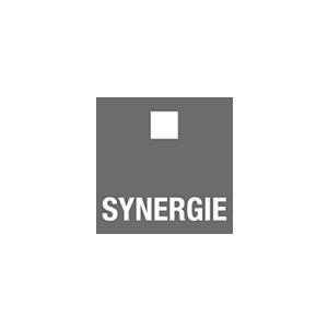 Fyff | Find Your Flex Force logo Synergie